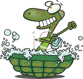Royalty Free Clipart Image of a Turtle Bathing in Its Shell