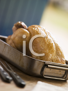 Royalty Free Photo of Roast Chicken in a Roasting Tray