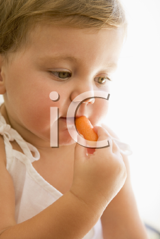 Royalty Free Photo of a Baby Eating a Carrot