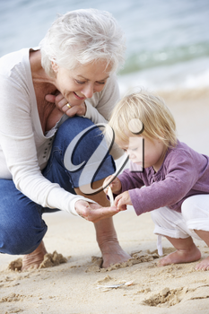 Grandmother And Granddaughter Looking at Shell On Beach Together