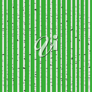 Perfect birch wood forest background, seamless pattern for web design