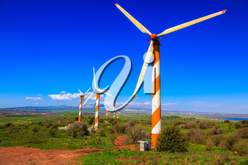 Israel. Flowering Golan Heights on a sunny day. Several huge modern windmills. Seen in the distance the snow-covered Mount Hermon