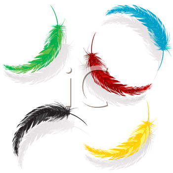 Royalty Free Clipart Image of Coloured Feathers