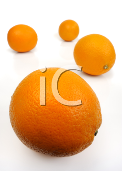 Royalty Free Photo of Oranges on a White Background