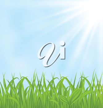 Illustration spring background with green grass - vector