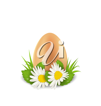 Illustration traditional Easter egg with flowers camomiles and grass, copy space for your text - vector