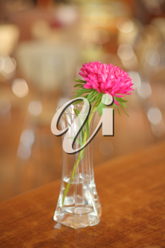 Flower on a table in the glass bottle