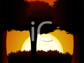 Royalty Free Clipart Image of Sun Setting Behind Trees in a Forest