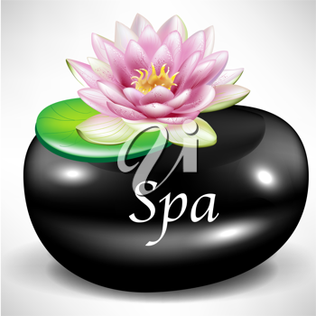 black massage/spa pebble as background with lotus flower