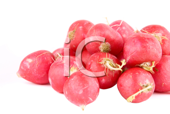 Royalty Free Photo of Red Radishes