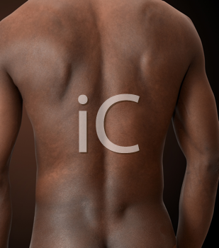 Royalty Free Photo of a Man's Back
