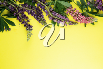 Yellow paper mockup for text with decor made of flower lupine