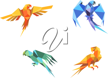Set of parrots birds in origami paper style