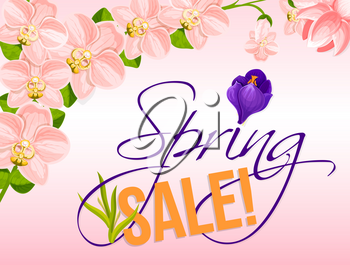 Spring Sale vector poster with orchid and crocus flowers. Holiday discount promo offer floral design for springtime shopping. Template of blooming pink and red spring flowers or cherry blossom