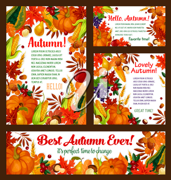 Autumn harvest posters or banners of pumpkin or grape and rowan berry, cherry and dog-rose fruits on autumn foliage. Vector falling leaves of maple, chestnut or oak acorns, corn and wheat or rye