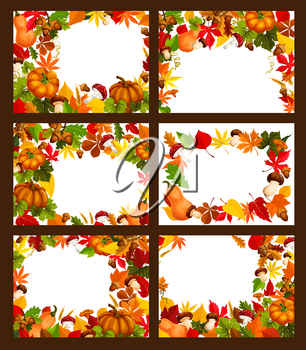 Autumn foliage of maple leaf, birch or rowan berry, oak acorn or elm and aspen tree frame with blank space for greeting card or holiday poster. Vector pine or fir cone, pumpkin and mushroom harvest