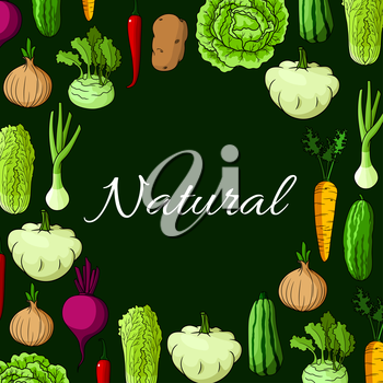 Veggies poster of farm harvest vegetables. Vector cabbage with zucchini squash, leek or celery, onion, kohlrabi and beet, chinese cabbage napa, carrot and potato, chili or bell pepper with cucumber. V