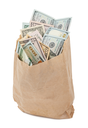 Paper bag with money
