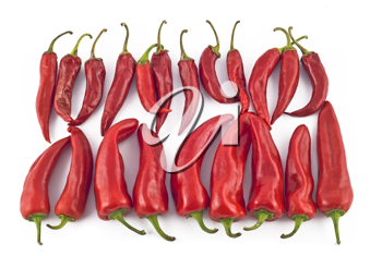 Red hot paprika over white background