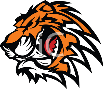 Royalty Free Clipart Image of a Tiger Background