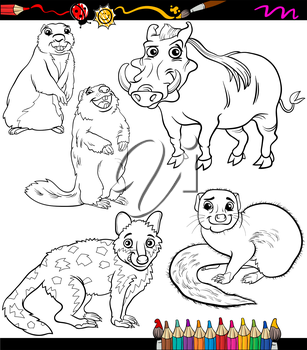 Coloring Book or Page Cartoon Illustration of Black and White Wild Animals Characters for Children