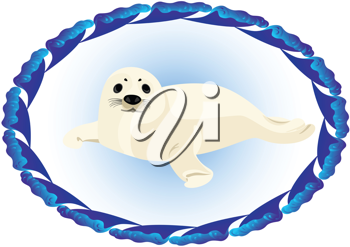 Royalty Free Clipart Image of a Young Seal