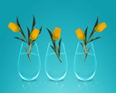 Royalty Free Photo of Three Clear Vases with Yellow Tulips