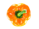 Orange bell pepper on white background
