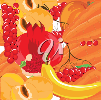 Vector illustration of the background from ripe fruit,berries and vegetables