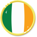 Vector  button with flag Ireland
