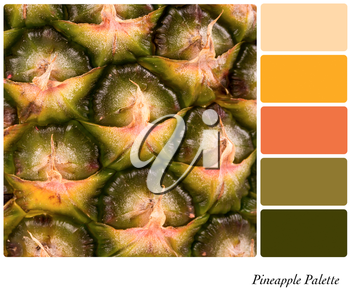 A closeup background texture of fresh pineapple,  in a colour palette with complimentary colour swatches.