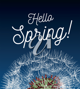 Text message hello spring, against a background of a spring landscape with a dandelion close-up. Vector illustration