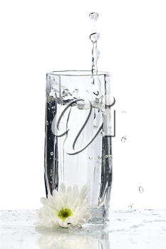 Glass of Water with splash and flower on white background