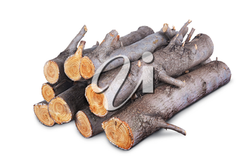 stack of firewood logs isolated on white background