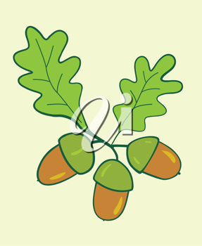 three acorns with leaves - vector illustration