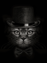 dark muzzle cat close-up in a hat and tie butterfly