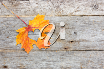 Fall in love photo metaphor. Maple leaf with heart shape on the wooden background