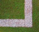 Lines on the sport grass field