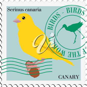 silhouette of canary