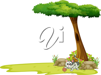 Illustration of a gray cat playing with a string ball under a tree on a white background