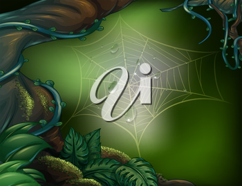 Illustration of a spider web in a rainforest
