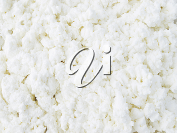 Close-up image of cottage cheese clods. Healthy food.