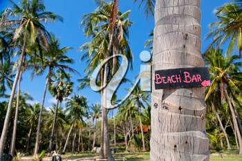 Beach bar sign on palm tree trunk in Thailand