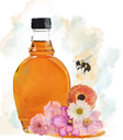 Watercolor Honey Bottle, Flowers And Bee