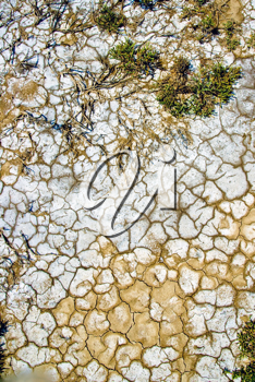 a high resolution dry ground texture