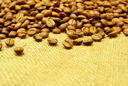 Royalty Free Photo of Coffee Beans on a Sack