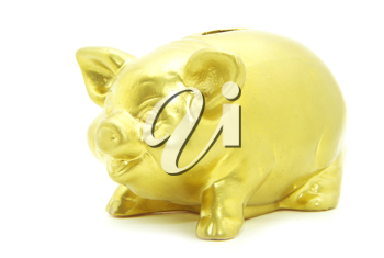 Golden piggy bank isolated on white