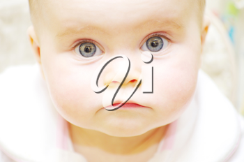 portrait of a beautiful baby on a white