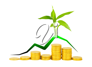 Royalty Free Photo of a Plant on Gold Coins