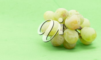 grapes on a green background